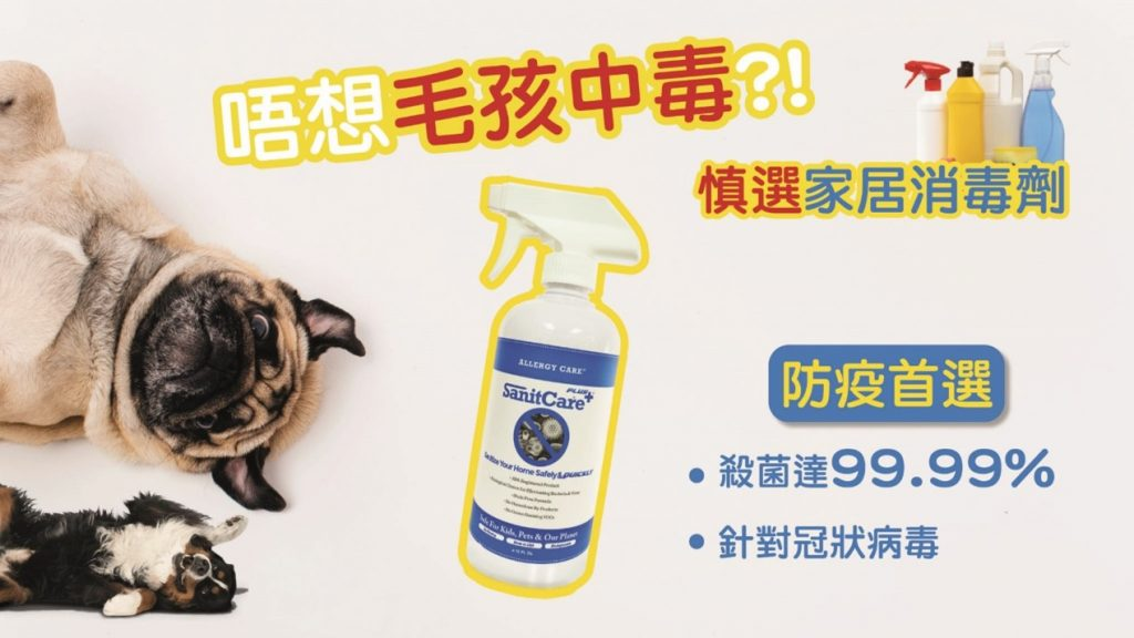 消毒噴劑怎麼選?寵物家庭可安心使用