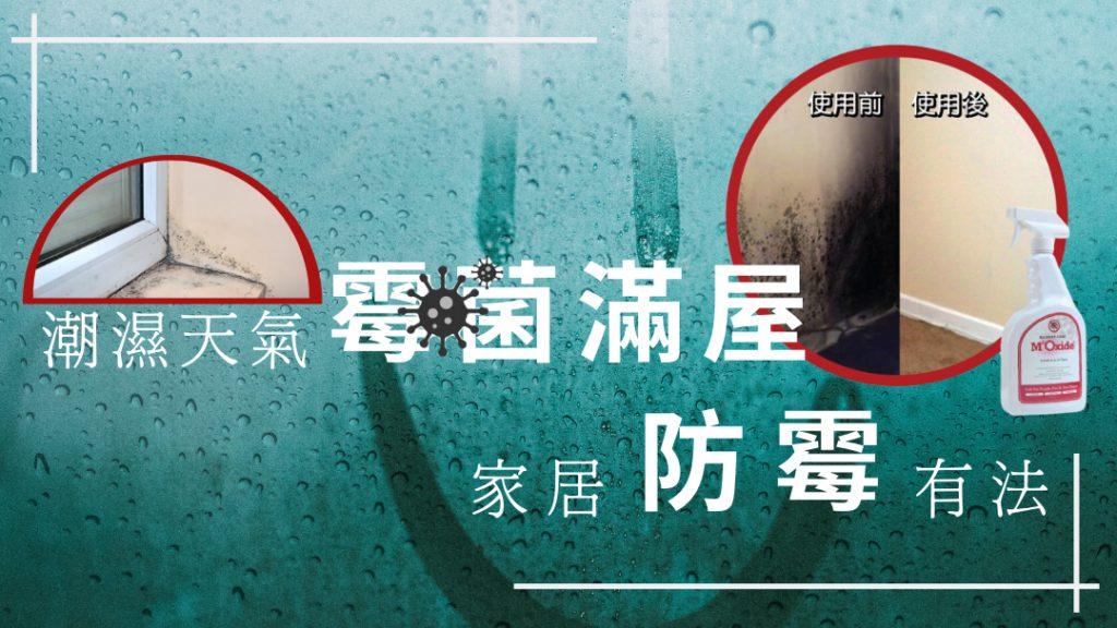 潮濕天氣令霉菌滿屋 家居防霉有法