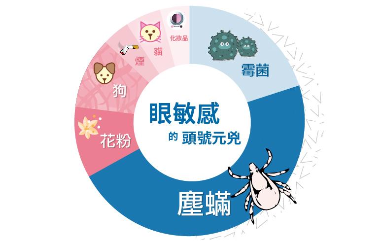 醫學研究發現塵蟎是香港人眼敏感主要成因