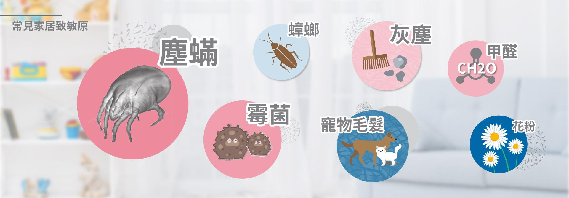 塵蟎、霉菌、甲醛為主要致敏原